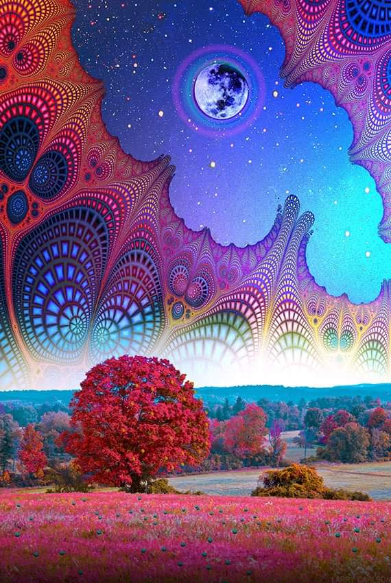 autumn-kingdom-by-larry-carlson-9zjac2bs6g.jpg